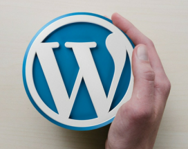 BLOG our 6 favorite Wordpress Plugins