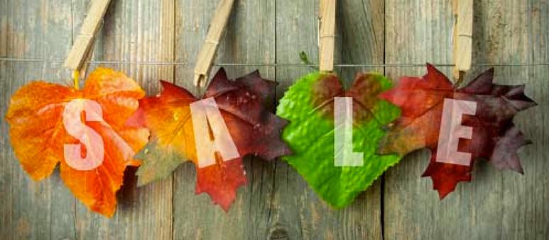 autumn Fall season sales ideas