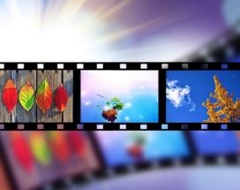 blog stock video